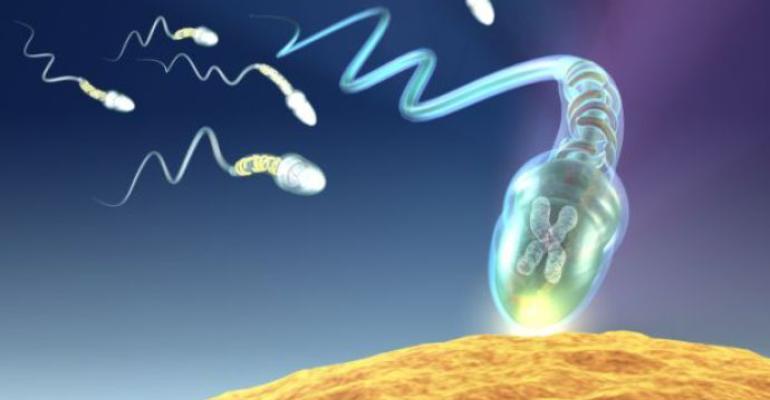 esperma-20130201-original